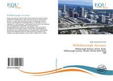 Capa do livro de Hillsborough Avenue