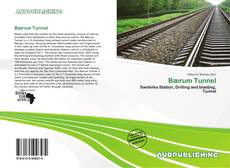 Bookcover of Bærum Tunnel