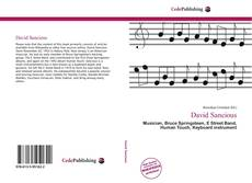 Bookcover of David Sancious