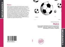 Bookcover of Bujica