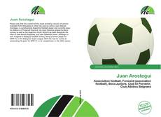 Bookcover of Juan Arostegui