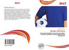 Bookcover of Ander Herrera