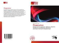 Phagocytose的封面