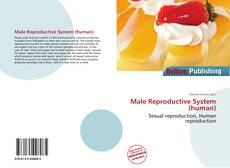 Bookcover of Male Reproductive System (human)
