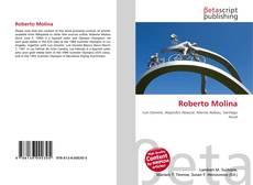 Capa do livro de Roberto Molina