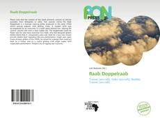 Raab Doppelraab的封面