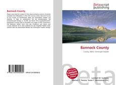 Buchcover von Bannock County