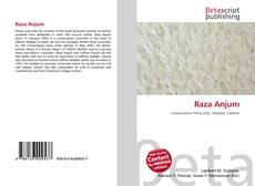 Bookcover of Raza Anjum