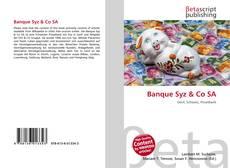 Banque Syz & Co SA kitap kapağı