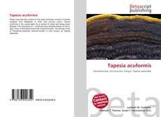 Bookcover of Tapesia acuformis