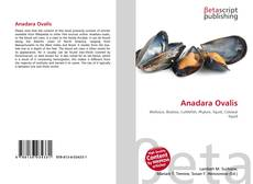 Обложка Anadara Ovalis