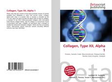 Portada del libro de Collagen, Type XII, Alpha 1