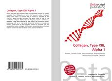 Portada del libro de Collagen, Type XIII, Alpha 1