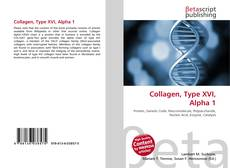 Bookcover of Collagen, Type XVI, Alpha 1