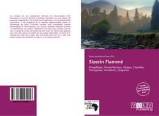 Sizerin Flammé kitap kapağı
