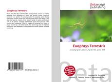 Bookcover of Euophrys Terrestris