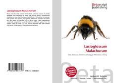 Borítókép a  Lasioglossum Malachurum - hoz
