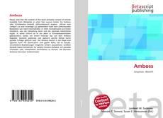 Buchcover von Amboss