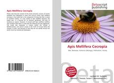 Bookcover of Apis Mellifera Cecropia