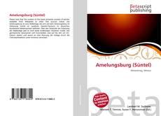 Bookcover of Amelungsburg (Süntel)