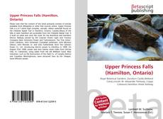 Bookcover of Upper Princess Falls (Hamilton, Ontario)