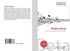 Bookcover of Peligro (Song)