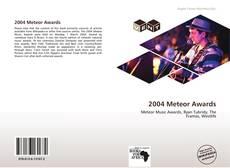 2004 Meteor Awards kitap kapağı
