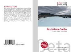 Обложка Barchatnaja Sopka