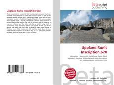 Uppland Runic Inscription 678的封面