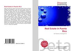 Bookcover of Real Estate in Puerto Rico