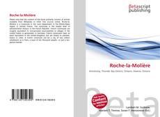 Couverture de Roche-la-Molière