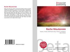 Bookcover of Roche Moutonnée