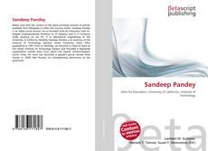 Sandeep Pandey kitap kapağı