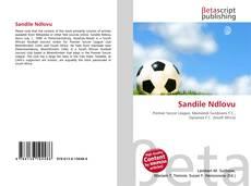 Bookcover of Sandile Ndlovu