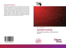 Couverture de Synaptic Scaling