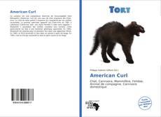 Обложка American Curl