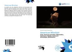 Обложка American Wirehair