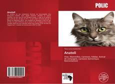 Обложка Anatoli