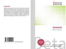Bookcover of Amesemi