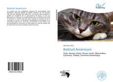 Обложка Bobtail Américain