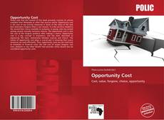 Bookcover of Opportunity Cost