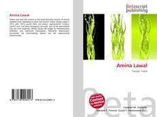 Bookcover of Amina Lawal