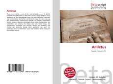 Bookcover of Amletus