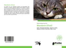 Couverture de Mandarin (Chat)