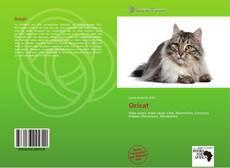 Ocicat的封面