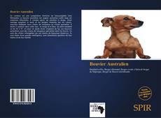 Bookcover of Bouvier Australien