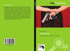 Bookcover of Gay Bashing