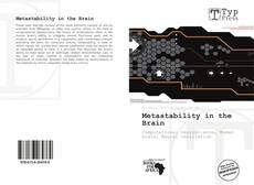 Metastability in the Brain kitap kapağı