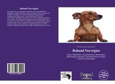 Обложка Buhund Norvégien