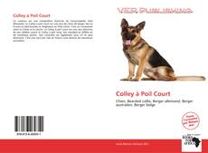 Bookcover of Colley à Poil Court